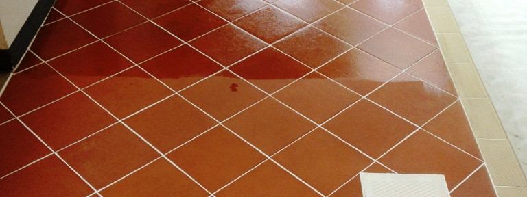 Cleaning Quarry Tiles around an Indoor Residential Swimming Pool